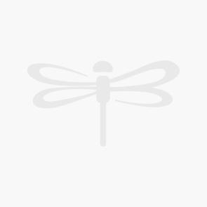 Dual Brush Pen Art Markers, Tropical, 6-Pack + Bristol Paper Pad Bundle