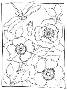 Wild Rose Printable Coloring Worksheet by Marie Browning